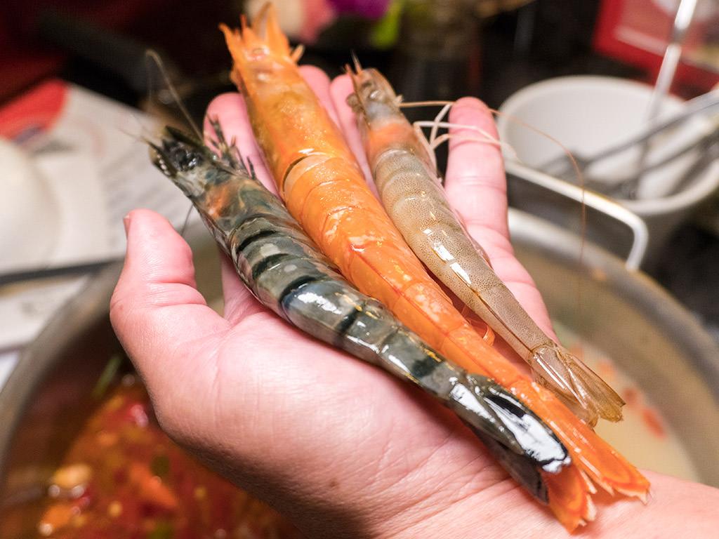【台南美食】小蒙牛頂級麻辣養生鍋。澳洲頂級和牛、天使紅蝦、黑美人野生草蝦、霸王白蝦爽爽吃|豪華鍋物吃到飽